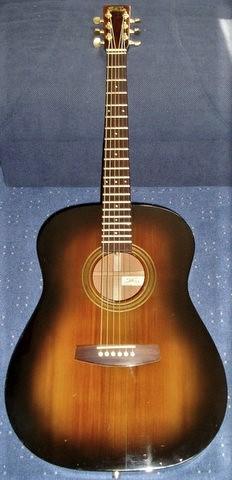 Fylde guitar pic